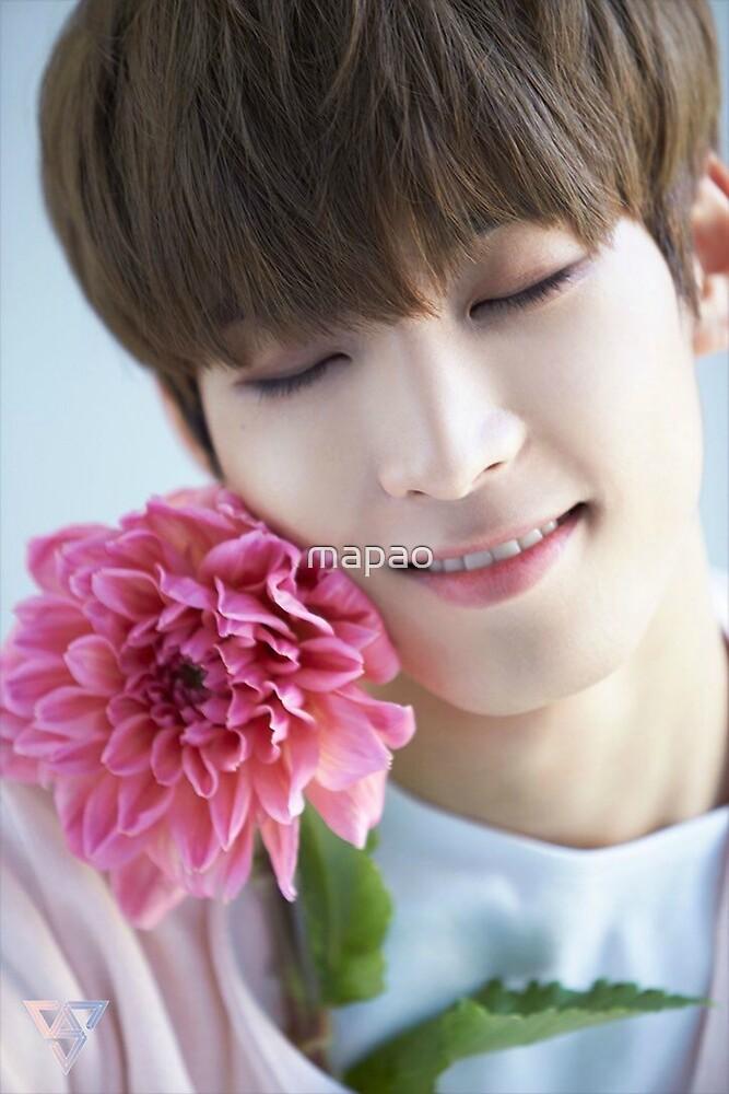 Seventeen Wonwoo Teen,Age Special by mapao