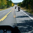 Motorcycle Run by Pamela Hubbard
