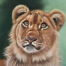 Young Lion by mbillustrations
