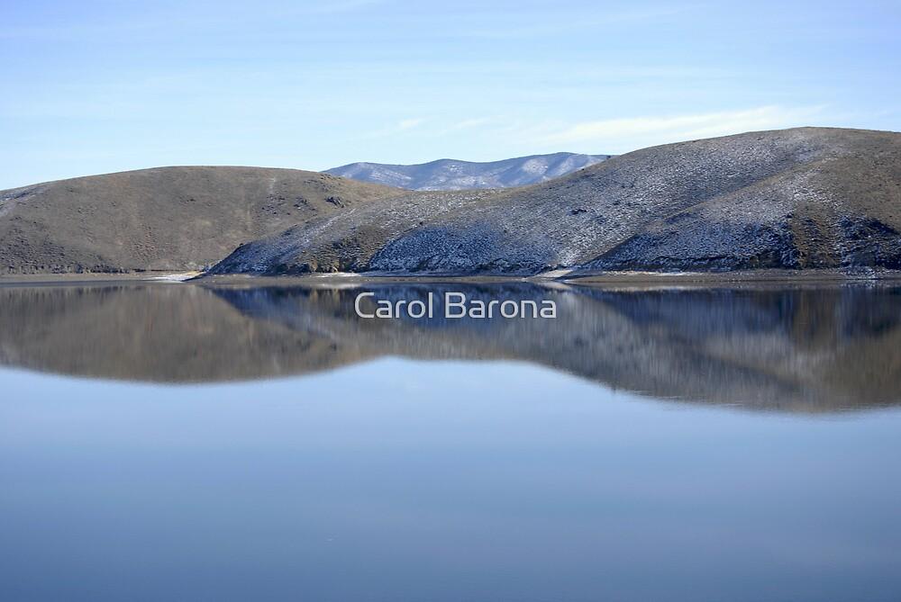 Lady Of The Lake by Carol Barona