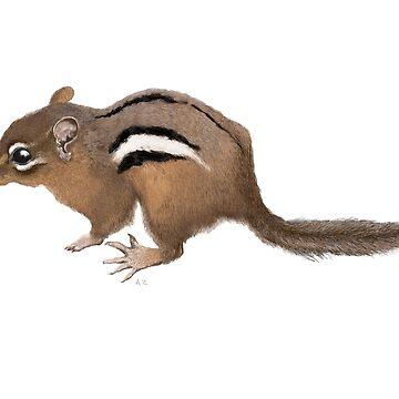 Chipmunk by salamandaz