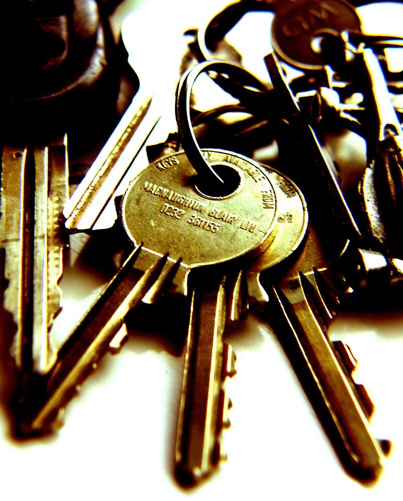 keys ... by SNAPPYDAVE