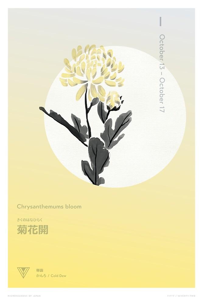 Chrysanthemums Bloom by Lisa Furze