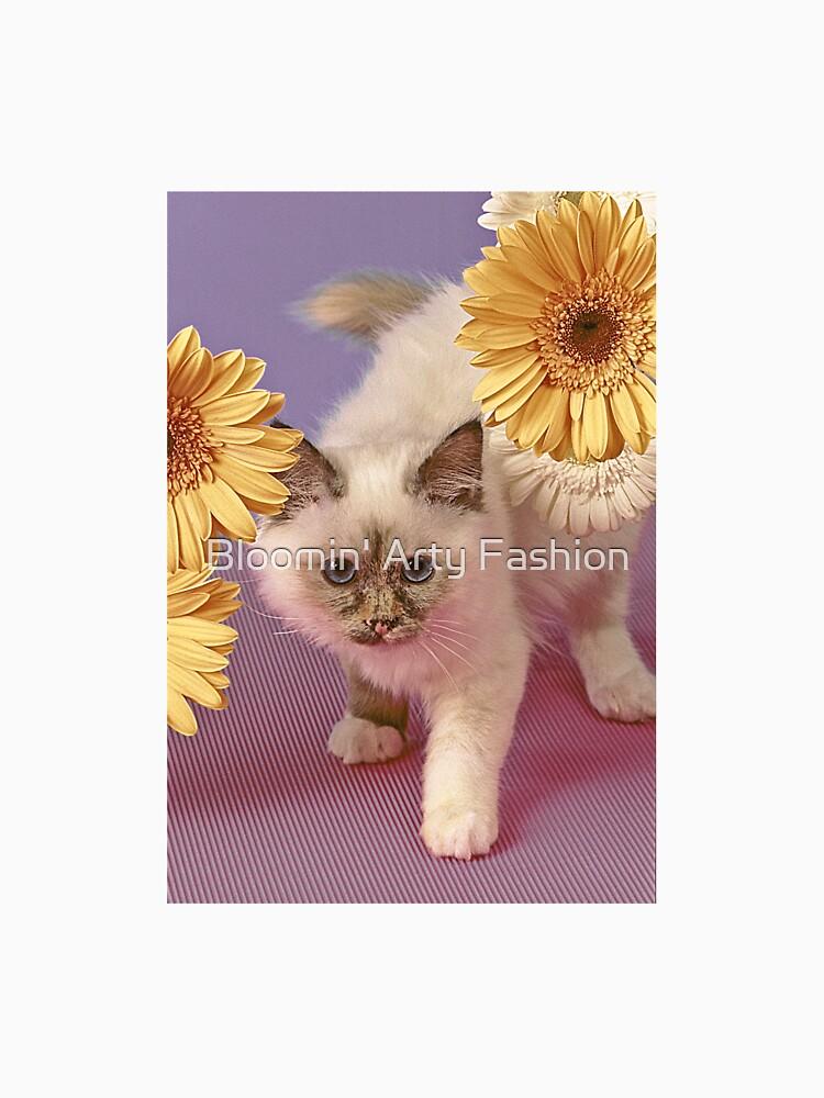 Kitten by aarty