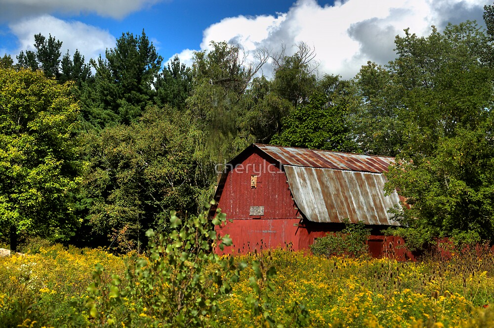 Barn at the nature center by cherylc1