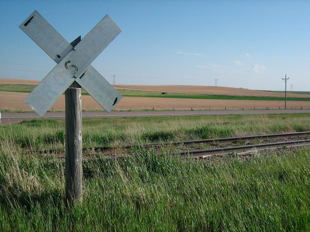 Nebraska Level Crossing   by jojobob