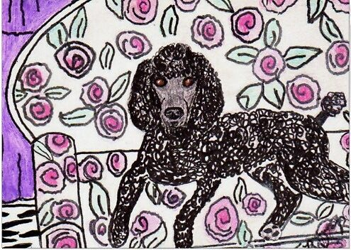 Black Poodle by Brenda Reeves