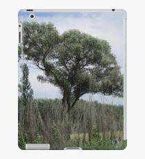 Trees amid bushes iPad Case/Skin
