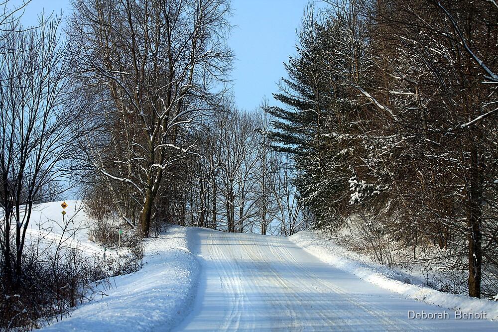 Sound Of Fresh Snow by Deborah  Benoit