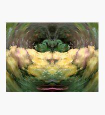 Wizzard Photographic Print