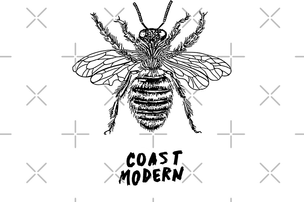 Honey Bee - Coast Modern by yourlocalltyler