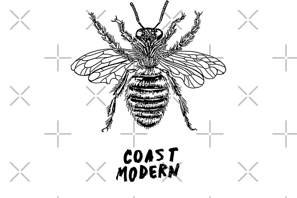 Honey Bee - Coast Modern by yourlocalltyler