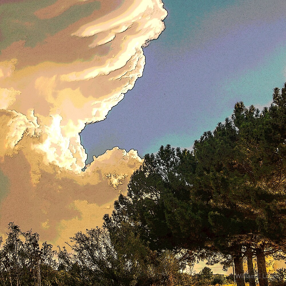 Southwest Cloud Formations over Las Cruces, NM by William E Lopez