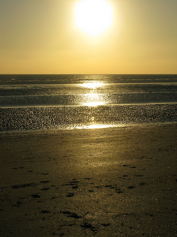 Camber Sands, Boxing Day 2008 by richalfa156