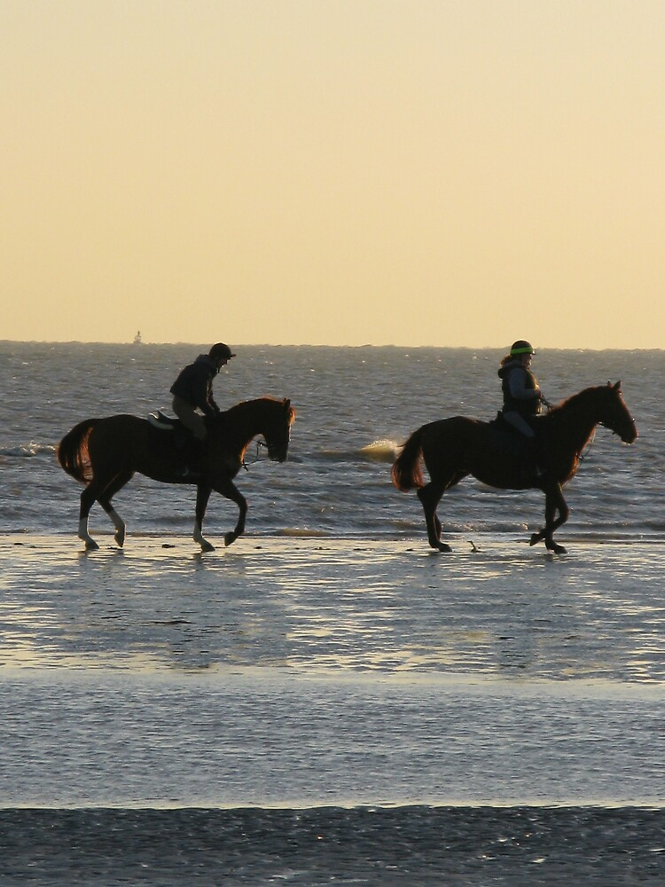 Horses in the Waves, Camber Sands, Boxing Day 2008 by richalfa156