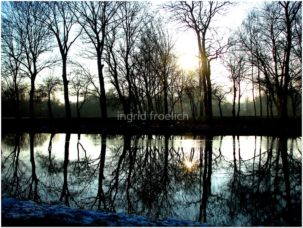 lacy reflections in noord holland by ingrid froelich