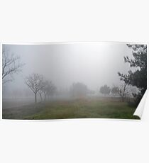 Weedy Field in the Fog Poster