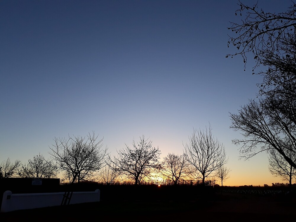 Beautiful Winter Evening Twilight  by CatherineKlein