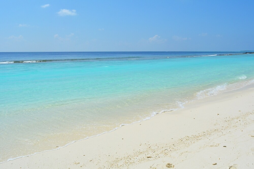 Beach on an island in the Maldives with turquoise water by oanaunciuleanu