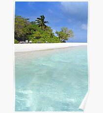 Palm trees and exotic vegetation on the beach of an island in Maldives Poster