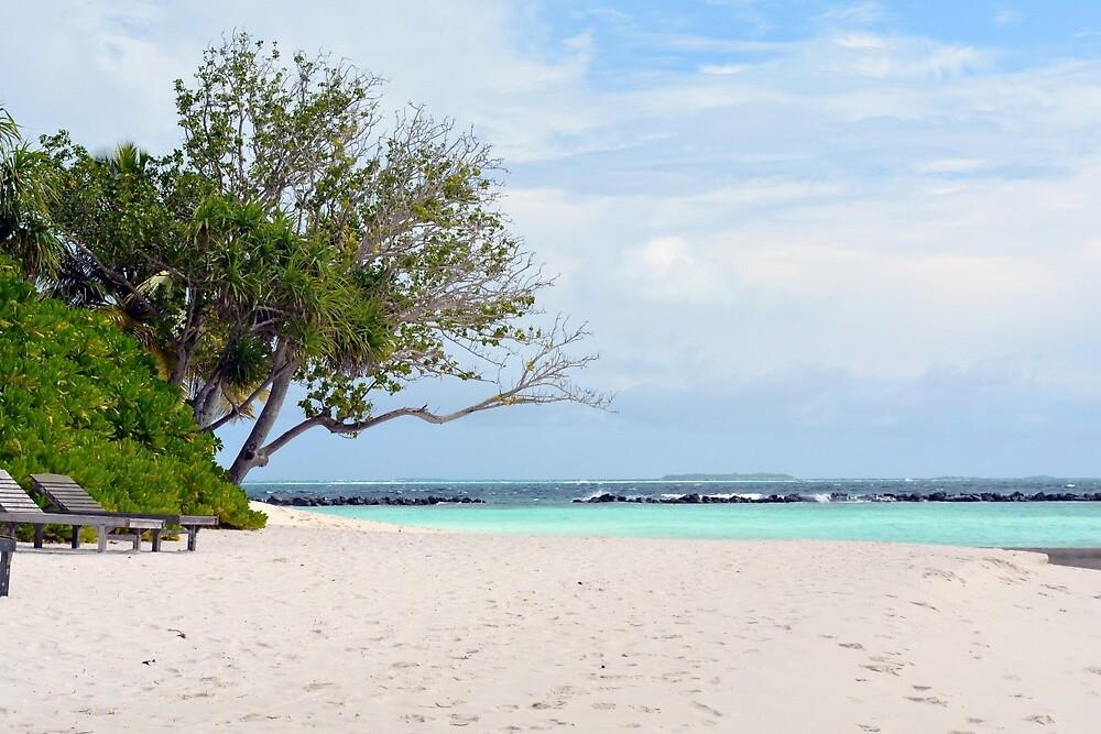 Beautiful beach in the Maldives islands by oanaunciuleanu