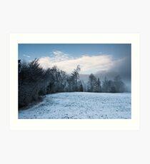 winter forest panorama Art Print