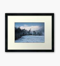 winter forest panorama Framed Print