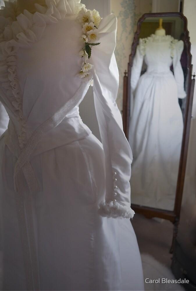 Wedding Gown by Carol Bleasdale