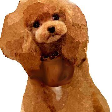 Poodle Puppy by chakragyspsy