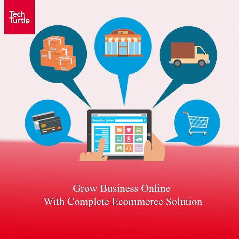 Create Online Store by turtle452