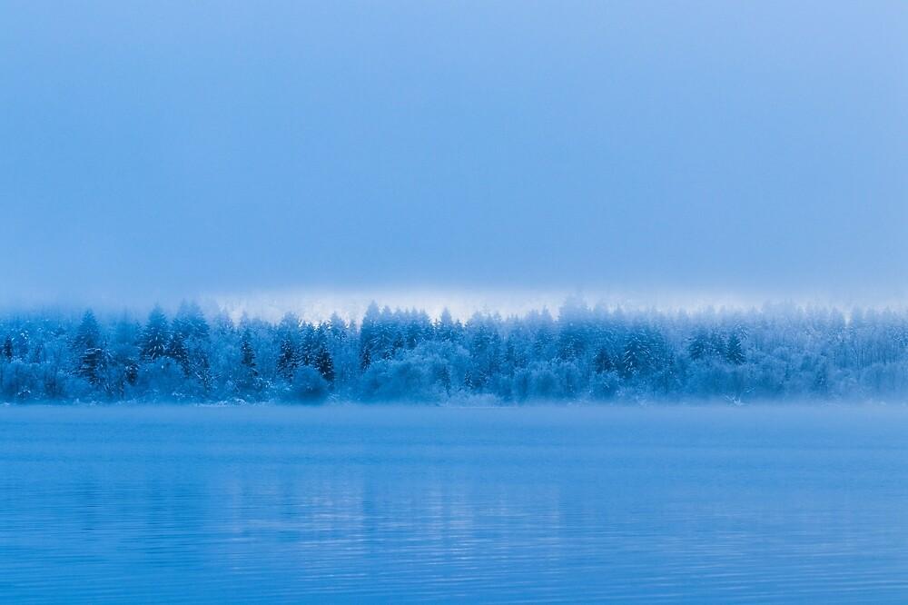 Mysterious fog over snowy lake Bohinj, Slovenia by Patrik Lovrin
