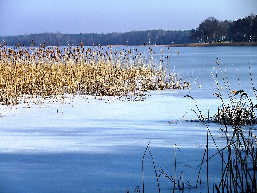 Ice Age at the Scharmützelsee by voelzis