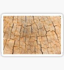 Shattered Wooden Log Sticker