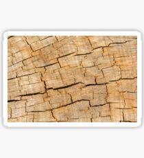 Shattered Wooden Log - Alternative Sticker