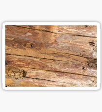 Shattered Wooden Log - Alternative II Sticker