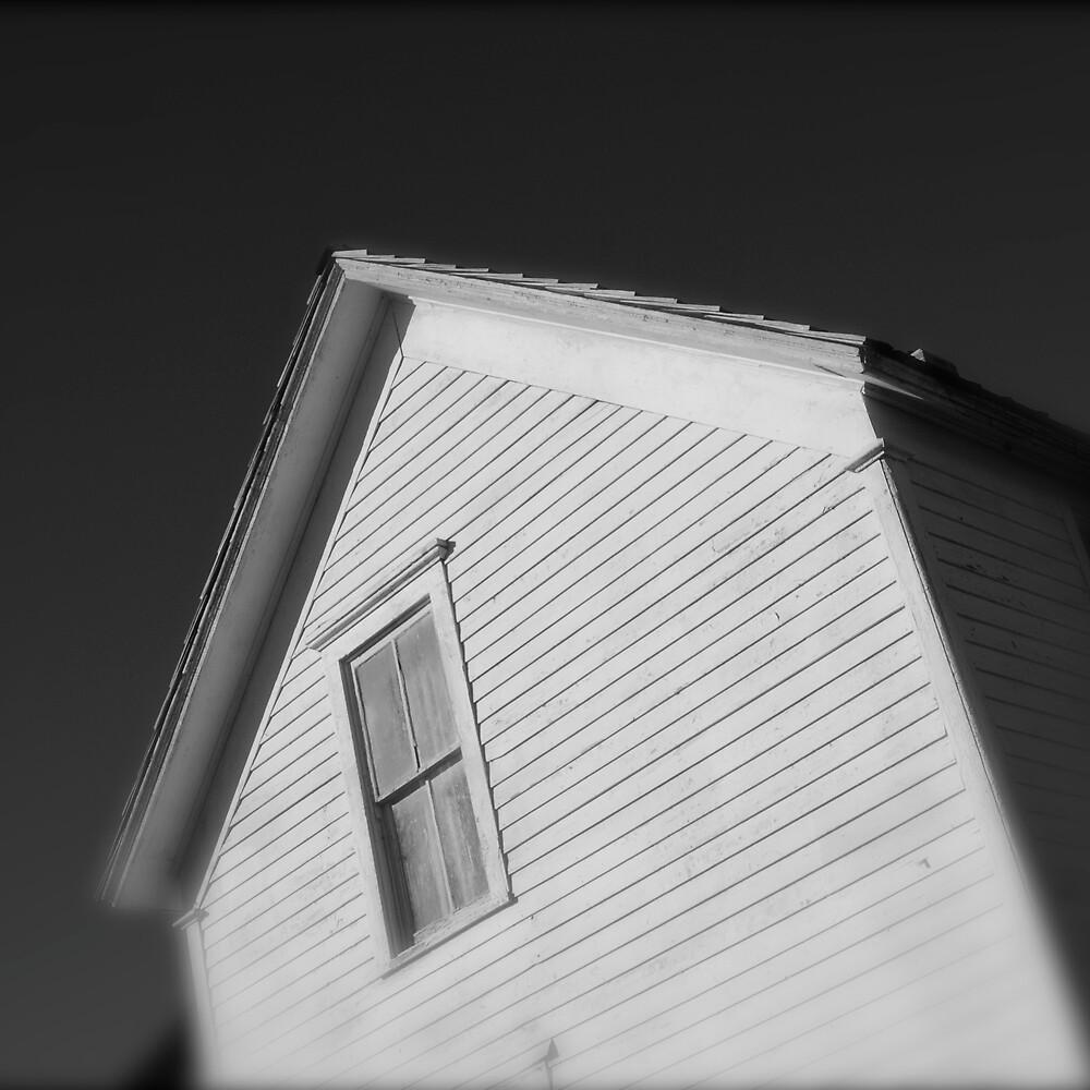 White House Window by Robert Baker