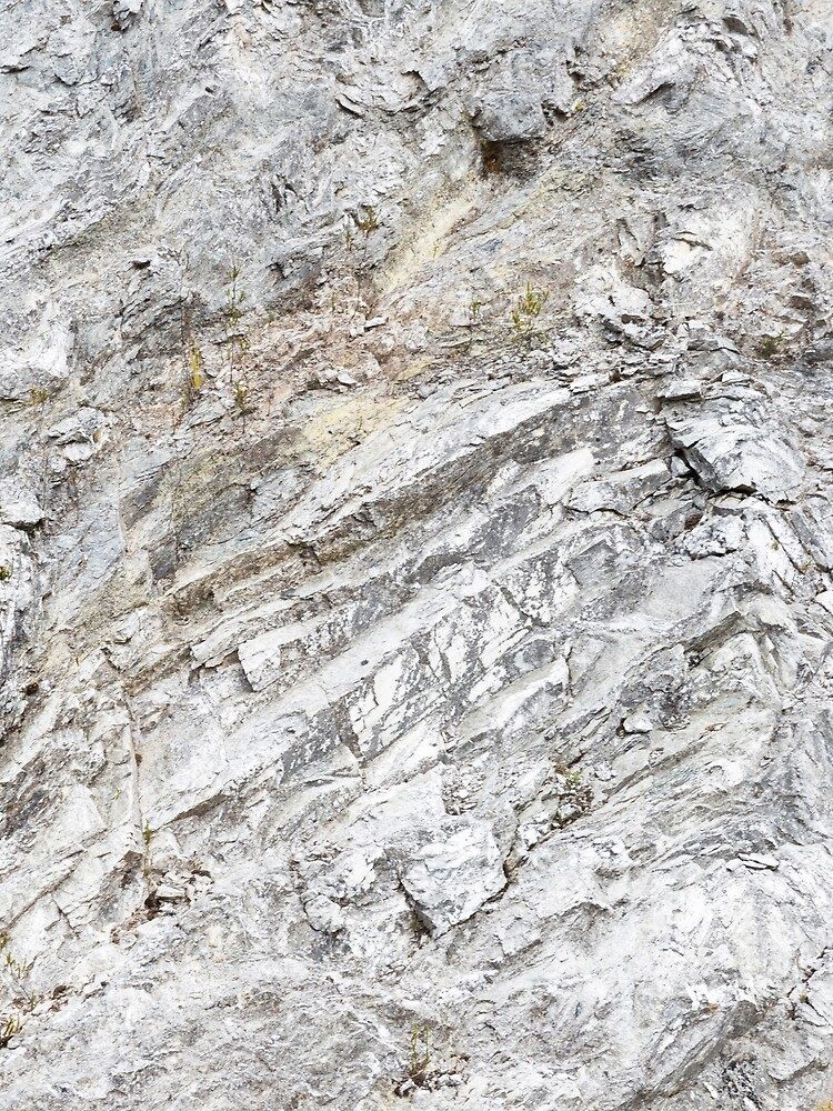 White Pearl Granite by textural