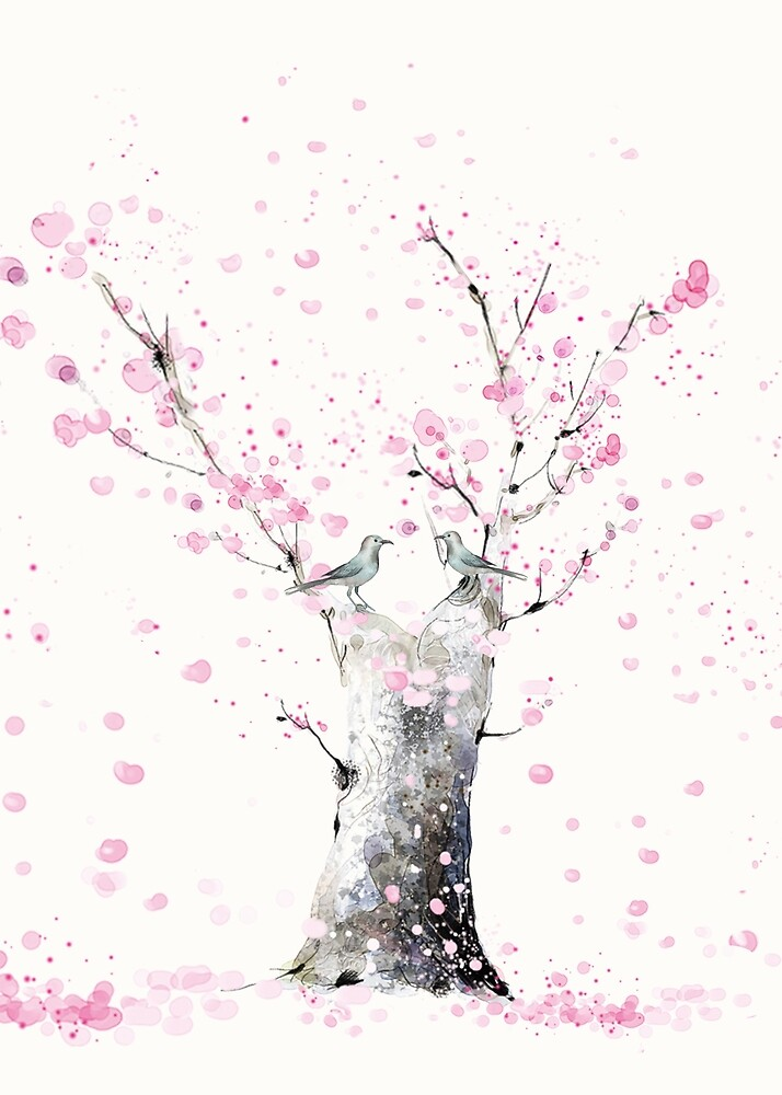 Cherry Blossoms  by Nadjaa