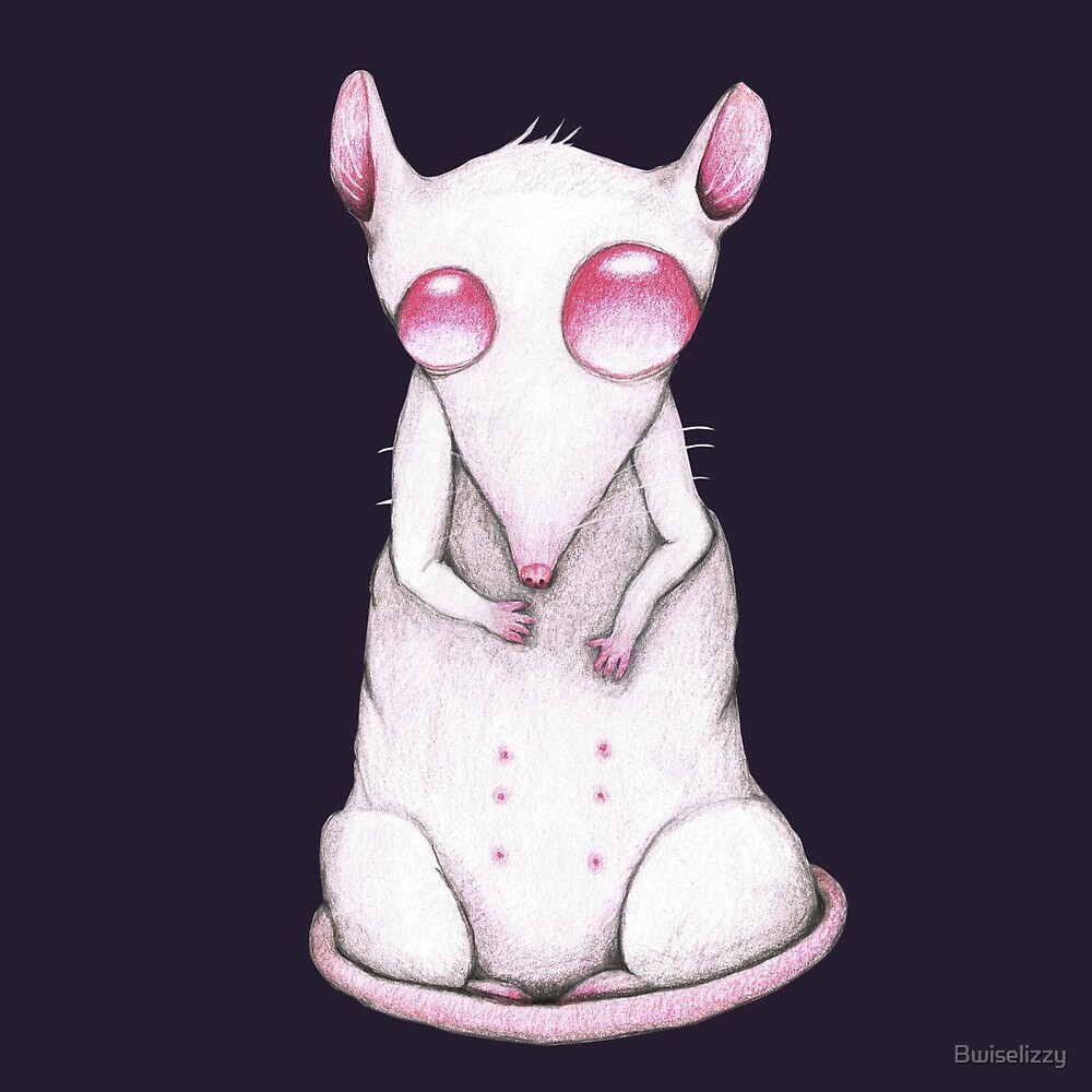 Albino rat pencil drawing by Bwiselizzy