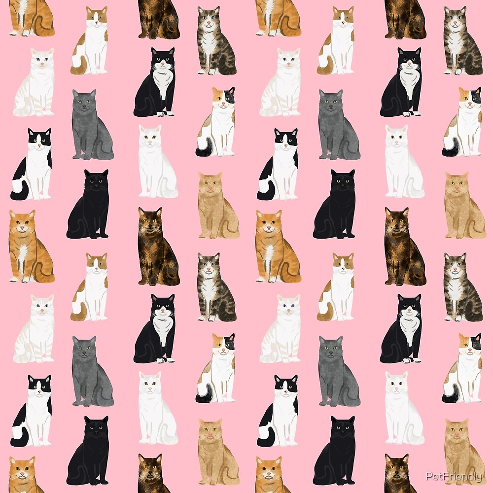 Cat lover must have gifts for cat ladies cat men kitty cats by PetFriendly