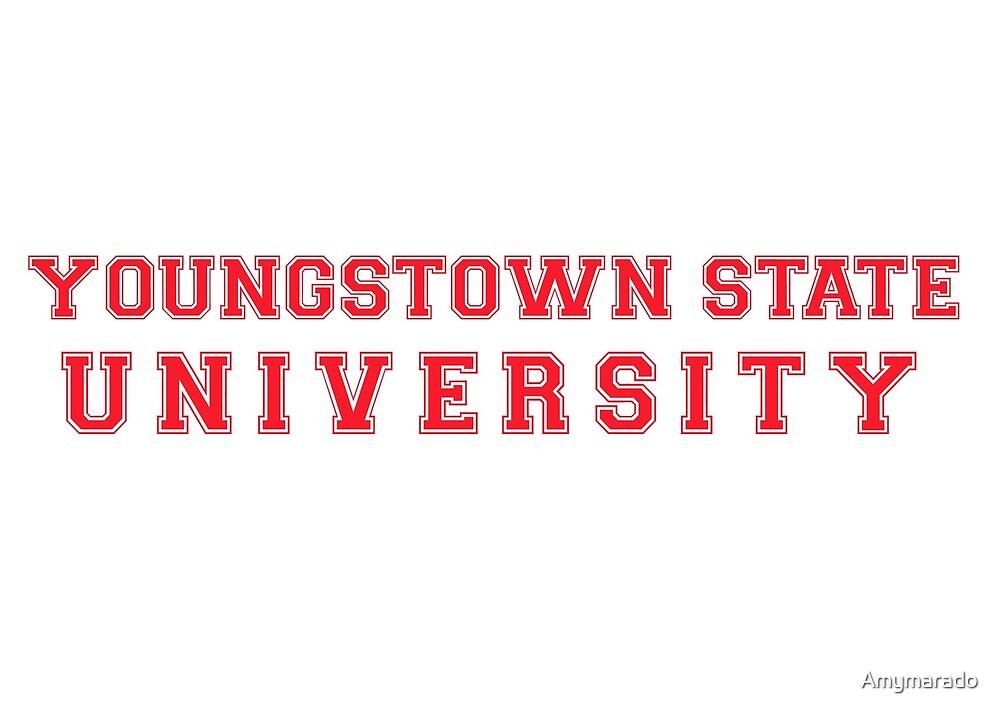 Youngstown State University by Amymarado