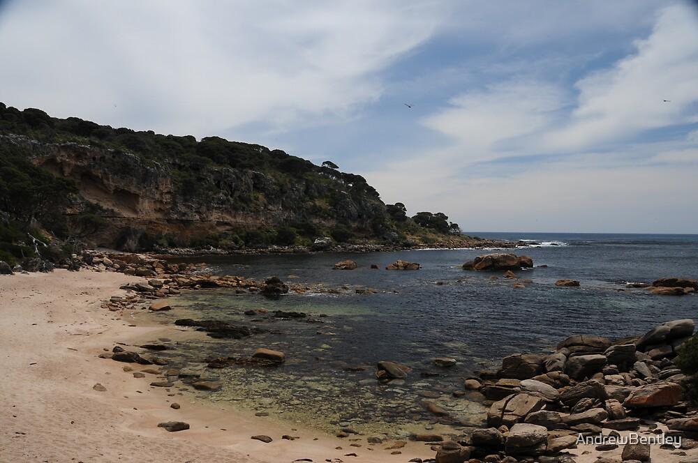 Cape Naturaliste WA #256 by AndrewBentley