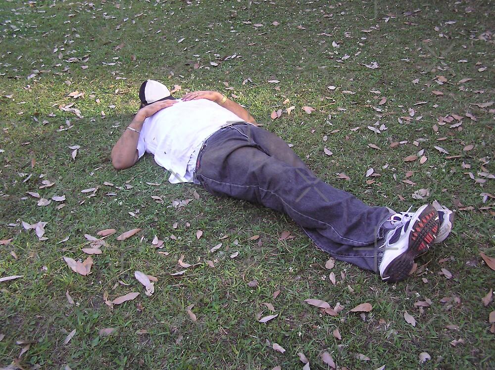 Enjoying a snooze in a partially shaded green meadow by ashishagarwal74