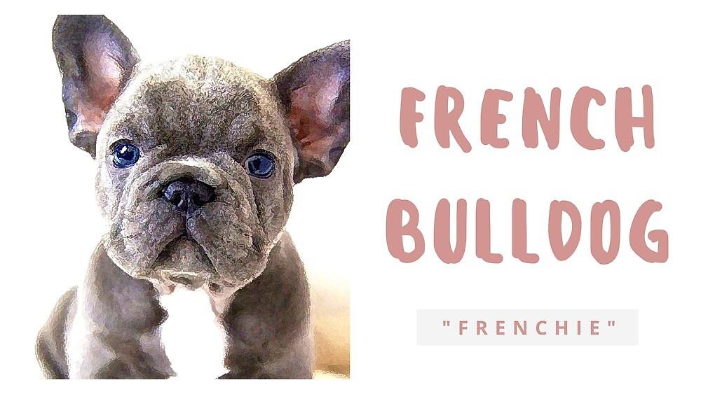 French Bulldog by Santo Traficante