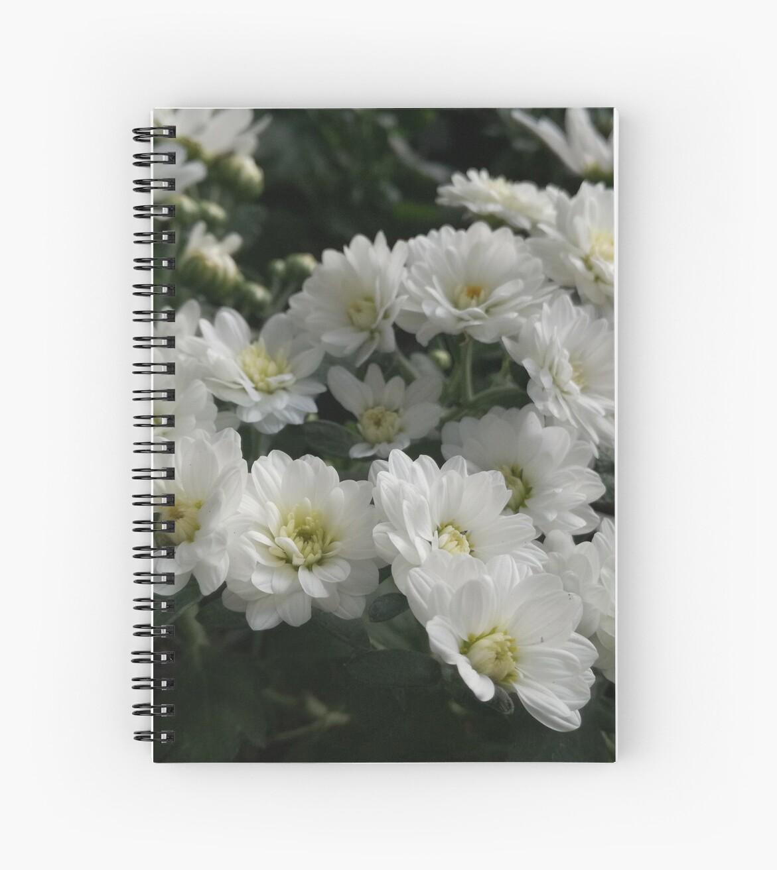 Flowers by Noemi Babics