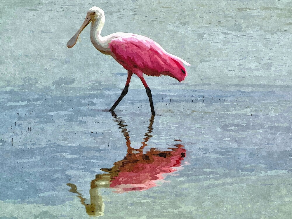 Roseate Spoonbill 2 - Artistic by jtrommer