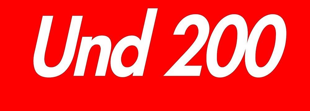 Und 200 by mikehav9