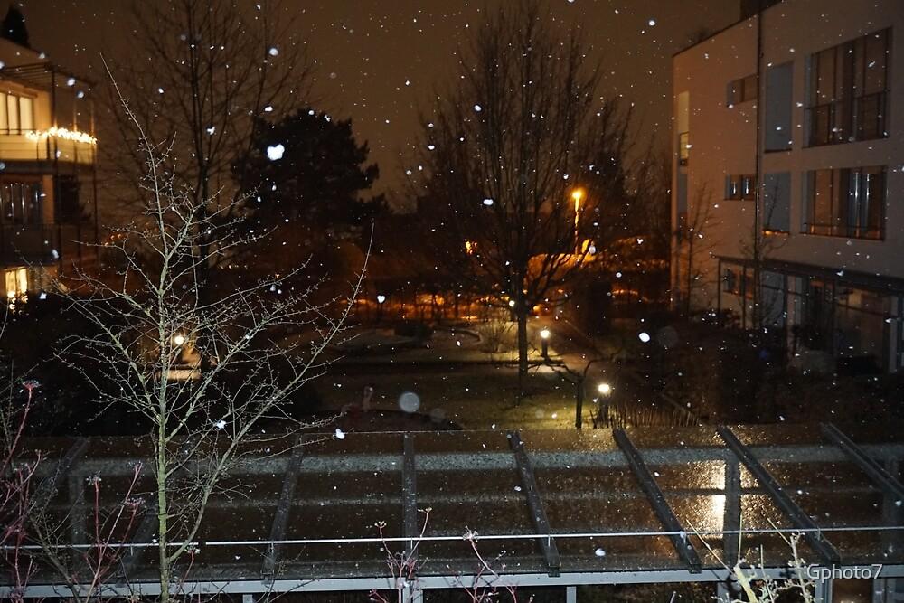 Snowfall / Snow by Gphoto7