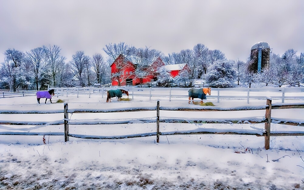 Pepperell MA,  by Larry Richardson