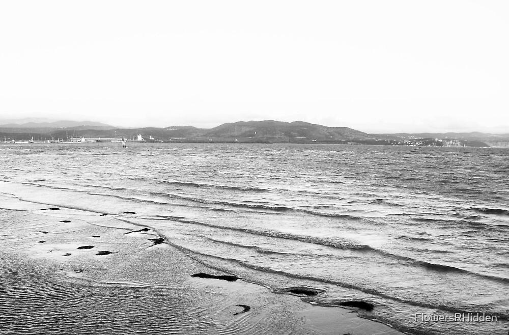 Winter sea by FlowersRHidden